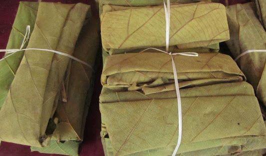 bungkus tempe dengan daun jati